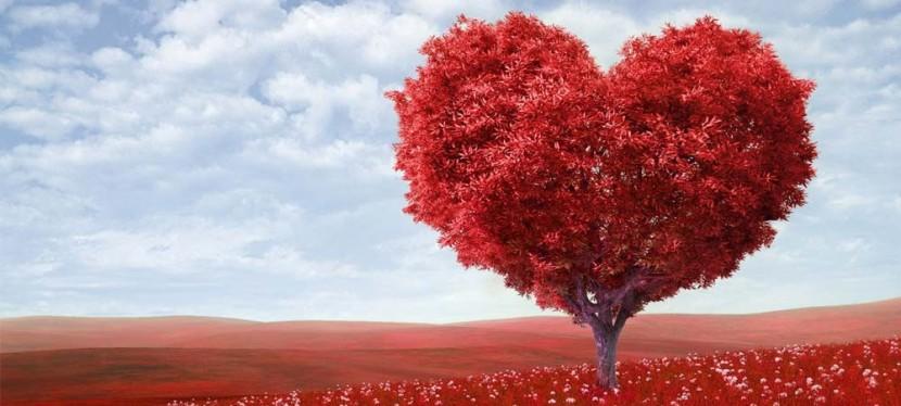 Connaissez-vous la Cohérence Cardiaque?